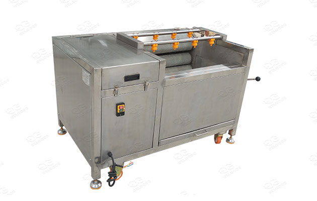 quality vegetable and fruit washing and peeling machine