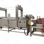 Select Right Type Potato Product Fryer