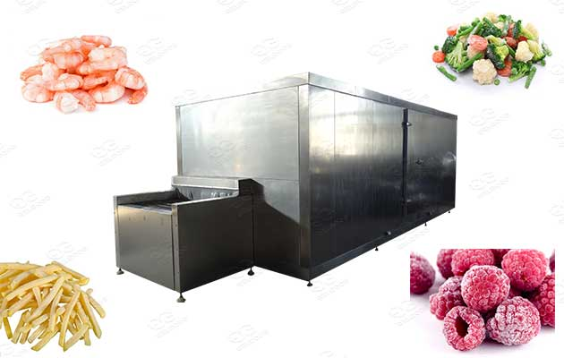 tunnel freezer machine for sale