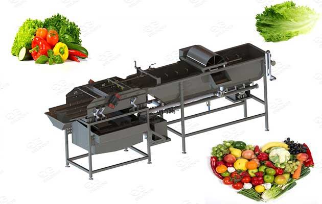 leafy vegetables and fruits washing machine price