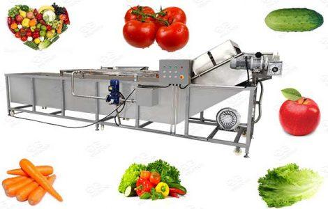 bubble type vegetable and fruit washing machine