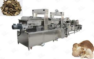 Mushroom Deep Frying Machine