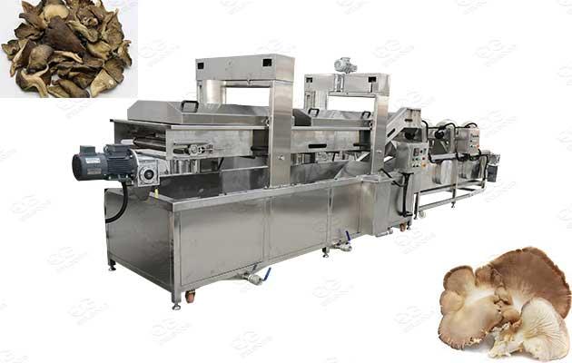 mushroom frying line manufacturer