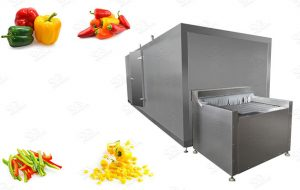 Frozen Pepper Processing Plant