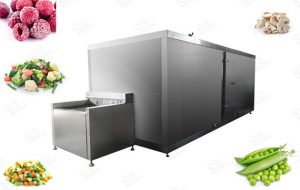 Industrial Vegetable and Fruit Freezer Machine