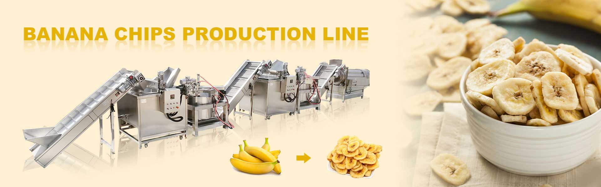 banana and plantain chips plant