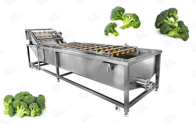 commercial broccoli floret washing machine