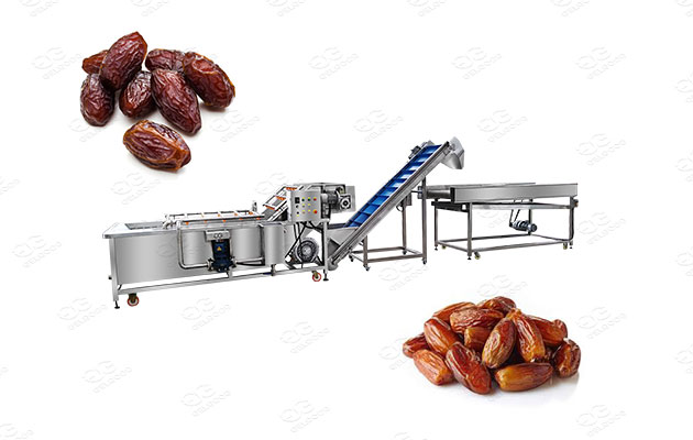 dates and jujube washing line