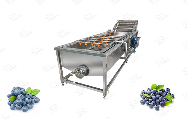 bluberry washer and cleaner supplier