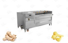 Industrial Ginger Washing and Peeling Machine