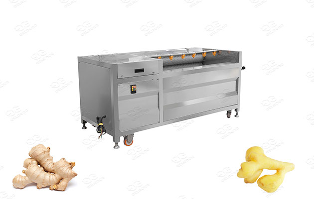 ginger washer and peeler manufacturer
