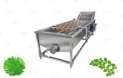 Industrial Moringa Leaves Washing Machine
