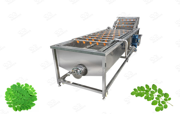industrial moringa leaves washing machine supplier