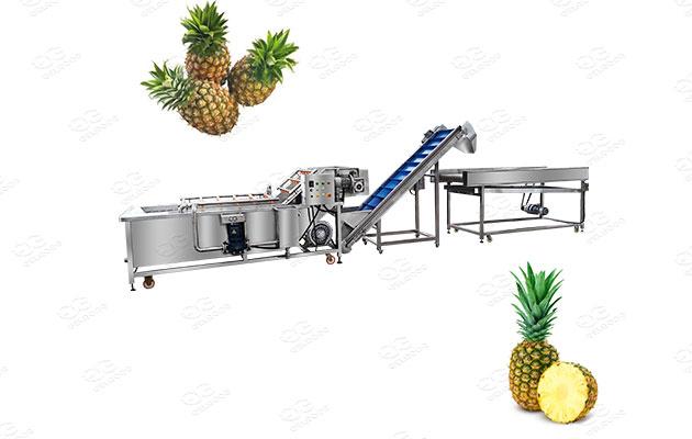 industrial pineapple washing machine price