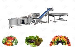 Commercial Salad Processing Line