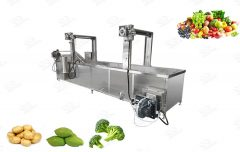 Industrial Vegetable and Fruit Blanching Machine