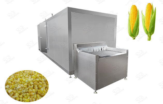 frozen sweet corn process line supplier