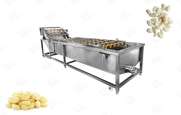 industrial peeled garlic cloves washer machine